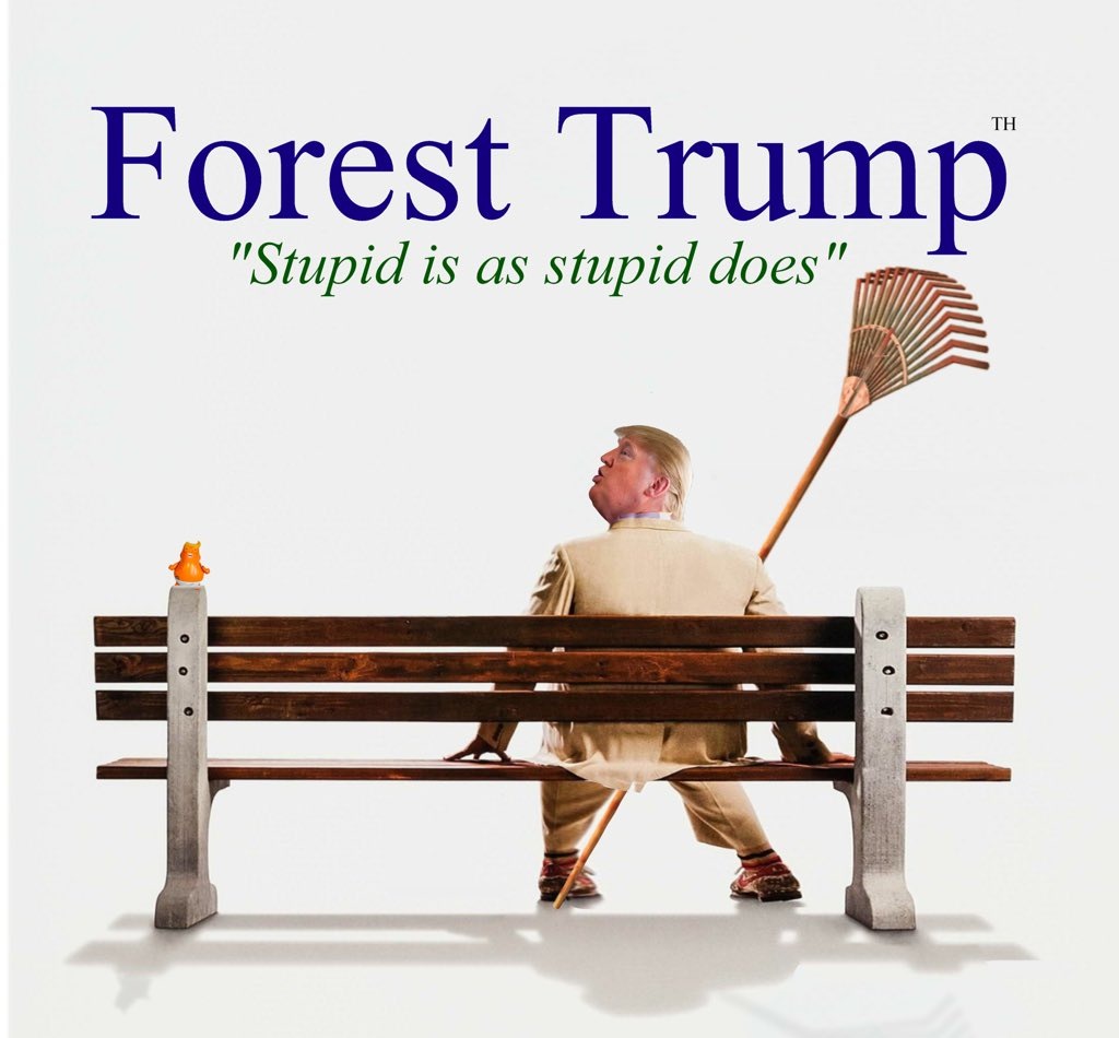 Forest Trump